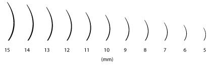 Dolžina trepalnic