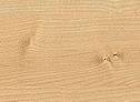 javor barva za vodno posteljo TAYA